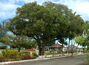 Aitutaki - Town Centre