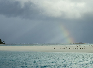 Nature's Response - Rainbow II